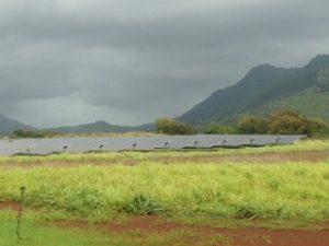 Hawaii's Anahola solar installation